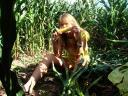 Ну тут кукуруза тоже не самая высокая) но повыше чем на первой фоте))))